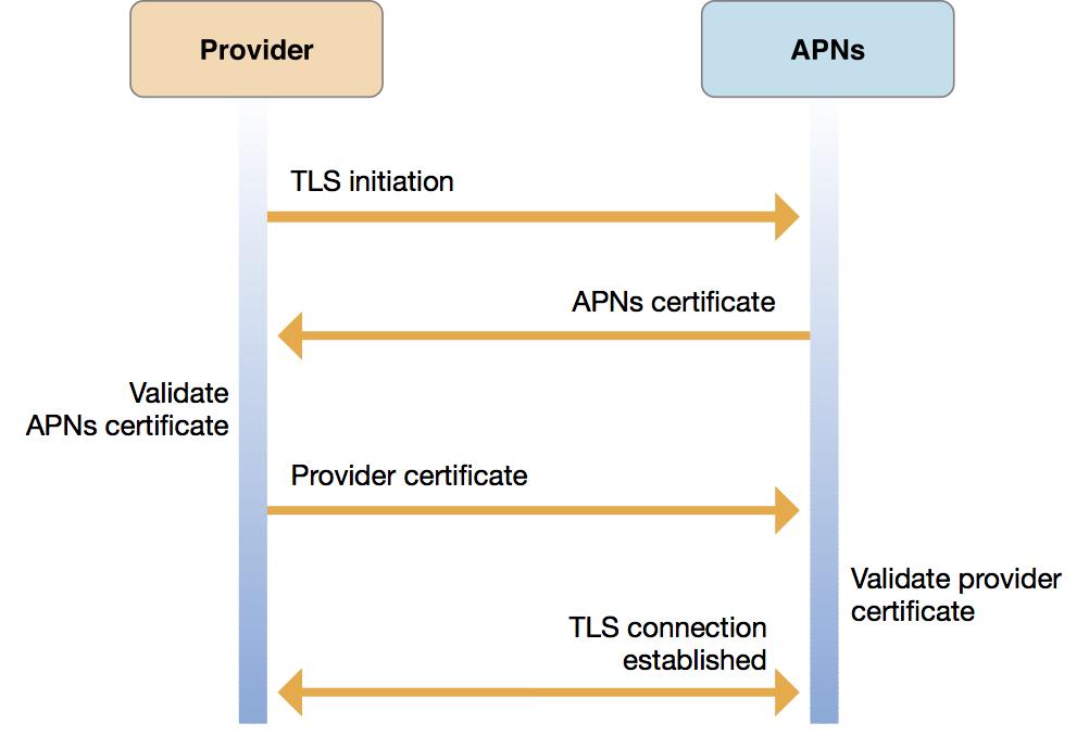 APNs and Provider Diagram